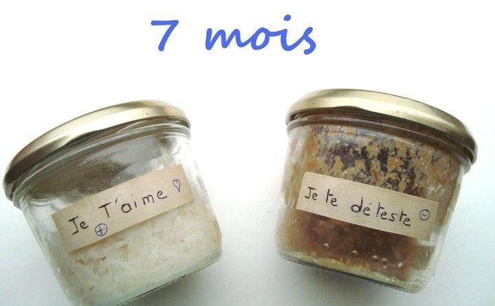 je-t'aime-je-te-hais-expérience-riz-masaru-emoto